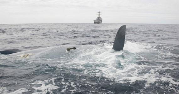 image of Cheeki-Rafit-missing-keel-US-Coast-Guard