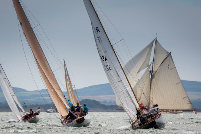image of Cereste, Freyia and Stiletto with Mariquita in the background photo credit Guido Cantini