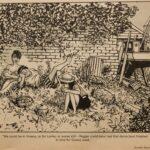 Giles cartoon 31 7 83